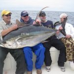 venice yellowfin tuna fishing